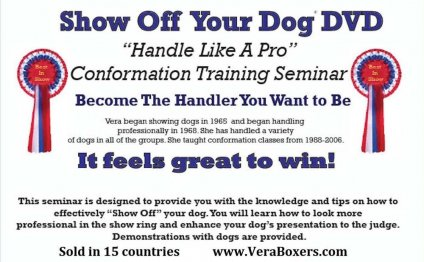 SHOW OFF YOUR DOG SEMINAR DVD